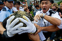 HONG KONG, HONG KONG SAR, CHINA - OCTOBER 13: Police arrest an 'Occupy Central' protester who protects himself with his hands in front of Pacific Place shopping mall in Queensway, Admirality, Hong Kong, China, on October 13, 2014. Hundreds of men attempted to break through barricades erected by Hong Kong pro-democracy protesters near the city's business district, as a third week of rallies tried the patience of truck and cab drivers. 'Occupy Central' protesters came back and sit on the pavement to make sure Queensway stayed theirs. The 'Umbrella revolution' or 'Occupy Central' is a civil disobedience movement that began in response to China's decision to allow only Beijing-vetted candidates to stand in the city's 2017 election for the top civil position of chief executive. Thousands of pro-democracy supporters are calling for open elections and the resignation of Hong Kong's Chief Executive Leung Chun-ying. (Photo by Lucas Schifres/Getty Images)