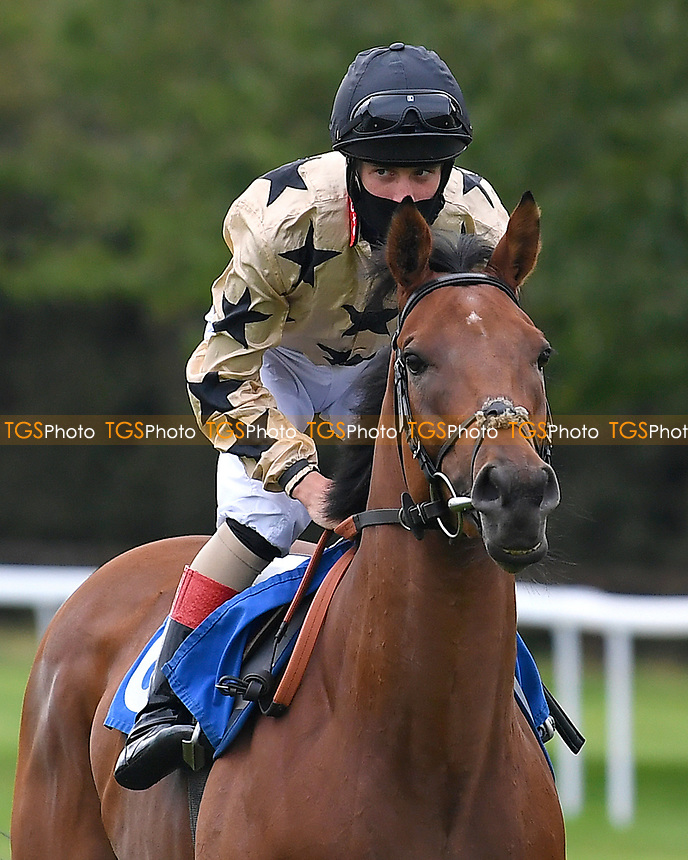 Twice as Likely ridden by George Rooke goes down to the start  of The Venture Security Handicap Stakes  during Horse Racing at Salisbury Racecourse on 11th September 2020