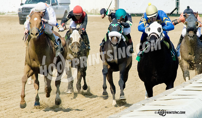 Picko's Pride winning The Fort Delaware Stakes before being disqualified and Avarice being put up for the win at Delaware Park on 7/12/14