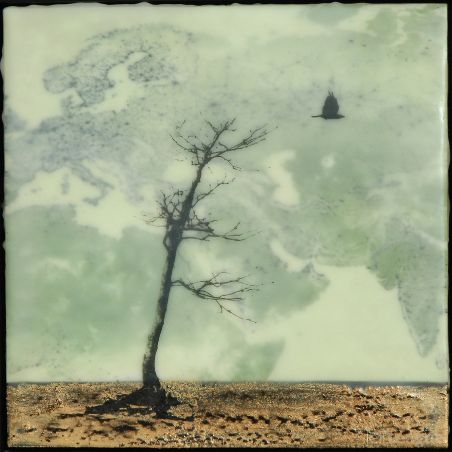 Encaustic photography painting of bare tree in winter with bird silhouette.