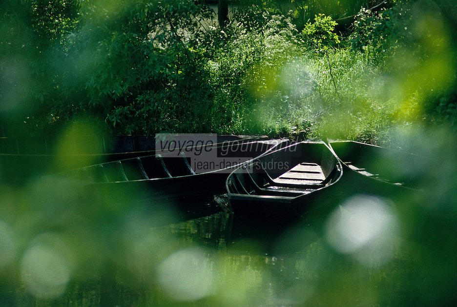 Europe/France/Poitou-Charentes/79/Deux-Sèvres/La Garette: Marais poitevin
