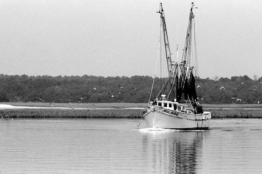 On board the Miss Shem Creek with shrimpers off the coast of Hilton Head Island