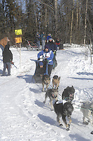 Cindy Gallea Anchorage Start Iditarod 2008.