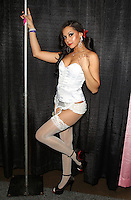 Desiree Sanchez at Exxxotica Atlantic City, NJ, Saturday April 12, 2014.