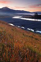Grassy bank of the Lamar River running through Lamar Valley on a fall morning, Yellowstone National Park, Wyoming, USA