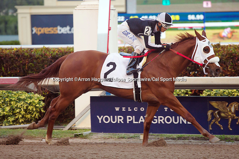 January 02, 2016: R Girls a Charmer wth Edgard Zayas up wins a maiden race for 3 year olds at Gulfstream Park. Gulfstream Park, Hallandale Beach (FL). Arron Haggart/ESW/CSM