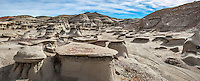 "The Bisti/De-Na-Zin Wilderness is a rolling landscape of badlands which offers some of the most unusual scenery found in the Four Corners Region.  Time and natural elements have etched a fantasy world of strange rock formations made of interbedded sandstone, shale, mudstone, coal, and silt.  The weathering of the sandstone forms hoodoos - weathered rock in the form of pinnacles, spires, cap rocks, and other unusual forms.  Fossils occur in this sedimentary landform.  Translated from the Navajo language, Bisti (Bis-tie) means ""a large area of shale hills.""  De-Na-Zin (Deh-nah-zin) takes its name from the Navajo words for ""cranes."""