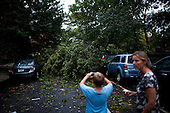 New York, New York<br /> September 16, 2010<br /> <br /> Park Slope after a severe storm and possible tornado.