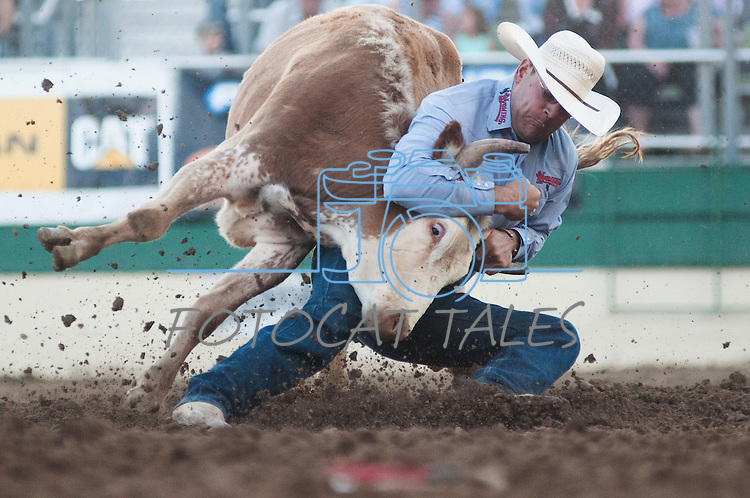 Seth Brockman from Wheatland, Wyoming tries to wrestle a steer during the final night of Reno Rodeo on Saturday, June 28, 2014.<br /> (Photo By Kevin Clifford)