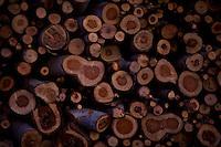 Pirapora_MG, Brasil...Detalhe de lenha em Pirapora, Minas Gerais...Detail of lumber wood in Pirapora, Minas Gerais...Foto: LEO DRUMOND / NITRO