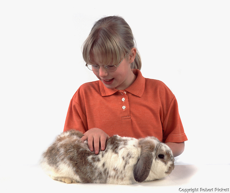 Young Girl checking skin & fur of Pet Rabbit,  Lop Lemon & White Colour, aged 10 years old, domestic, white background, cut out, studio, health