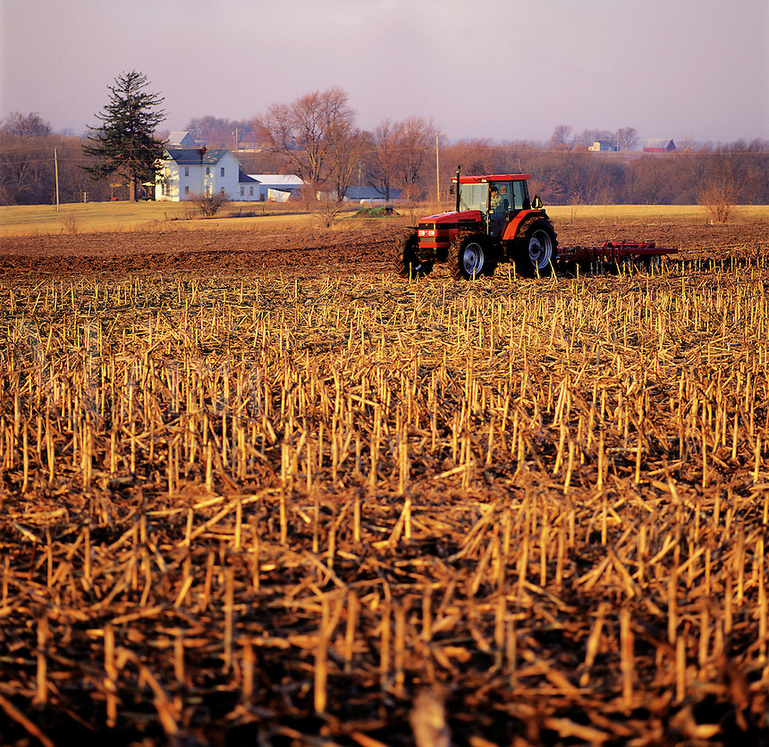 A tractor plows a field of corn stubble.