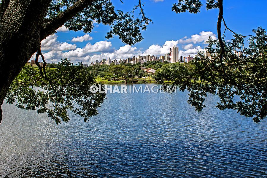 Lago Igapo em Londrina. Parana. 2013. Foto de Alf Ribeiro.
