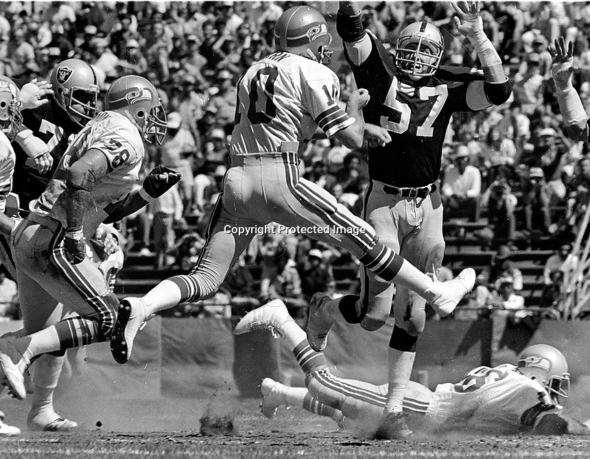 Seattle QB Jim Zorn is rushed by Oakland Raiders linebacker Randy McClanahan.(1981 photo/Ron Riesterer)