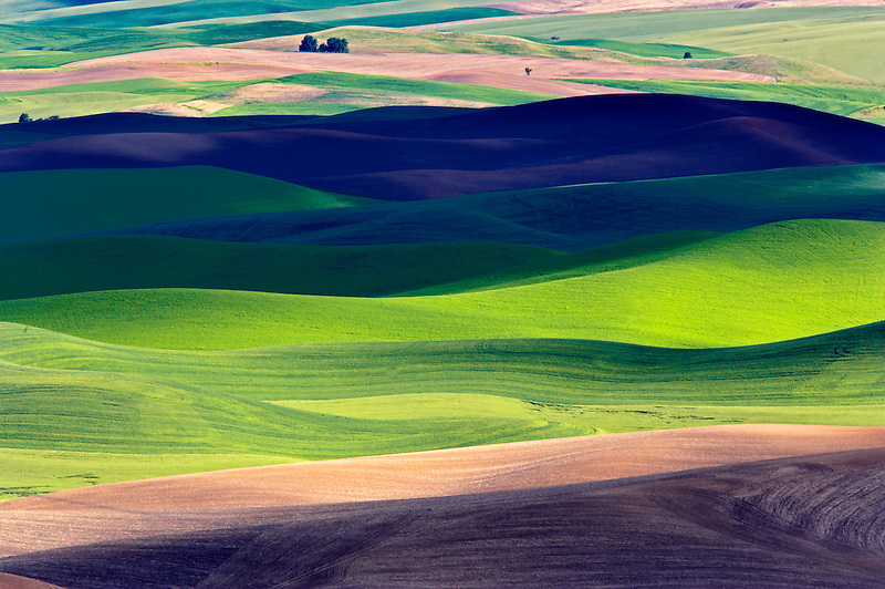 Rolling hill patterns with sun peaking through clouds. The Palouse near Colfax, Washington