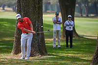 Tyrell Hatton (ENG) chips from the trees onto 11 during round 2 of the World Golf Championships, Mexico, Club De Golf Chapultepec, Mexico City, Mexico. 3/2/2018.<br /> Picture: Golffile | Ken Murray<br /> <br /> <br /> All photo usage must carry mandatory copyright credit (&copy; Golffile | Ken Murray)