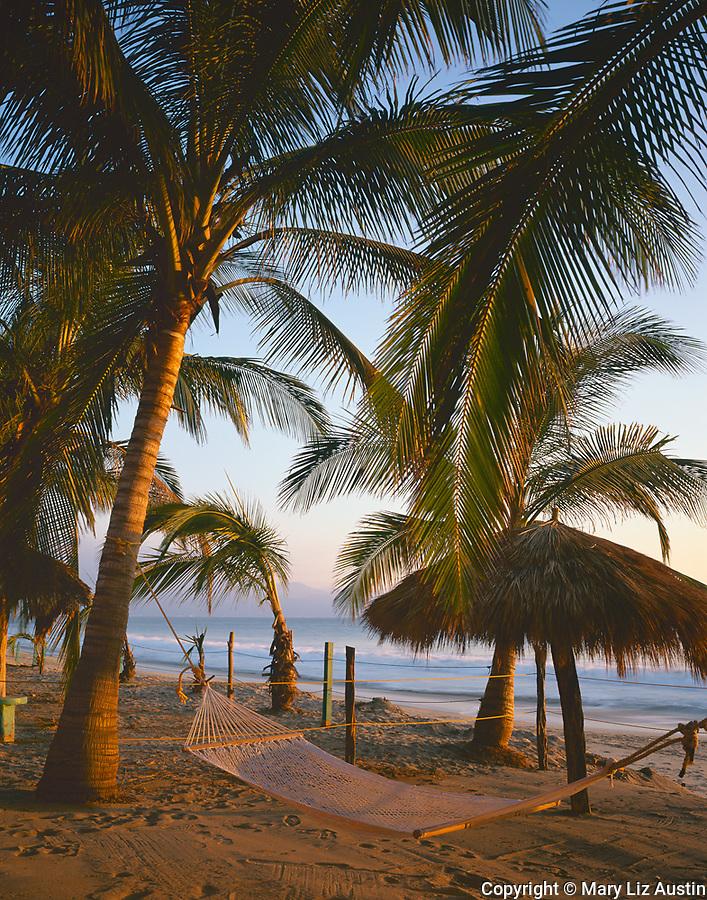 Nayarit, Mexico: Sunset light on coconut palms (Cocos nucifera) and hammock on the beach of Bahia de Banderas (Banderas Bay) near the village of Bucerias
