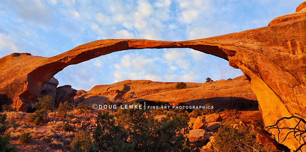 The classic Landscape Arch in the morning, within the Devil's Garden hiking area at Arches National Park, Utah, USA