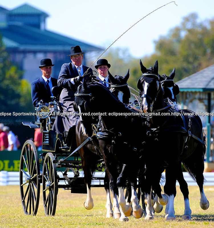 7 October 2010: William Long (USA) and his team compete during the Dressage Test for Driving in the World Equestrian Games in Lexington, Kentucky