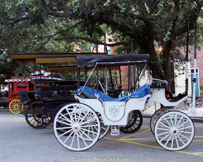 Every girl's wedding dream is sure to include being driven to the ceremony in a white carriage pulled by a white horse. Young lady, here is your white carriage!