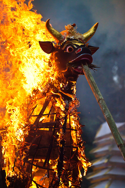 A Hindu style CREMATION where the dead body is burned inside a wooden bull - UBUD, BALI, INDONESIA