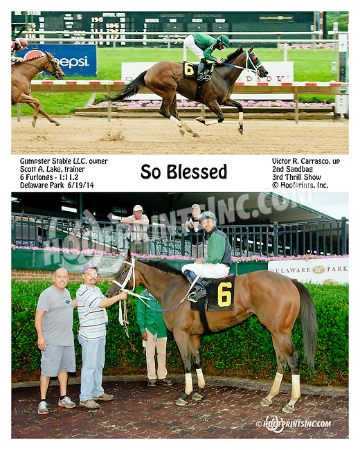 So Blessed winning at Delaware Park racetrack on 6/19/14