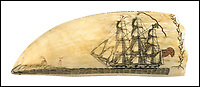 BNPS.co.uk (01202 558833)<br /> Pic: Robert.C.Eldred/BNPS<br /> <br /> An exquisite early 19th century scrimshaw whale's tooth considered a 'masterpiece' by experts has sold for a world record &pound;348,000.<br /> <br /> The 8in tooth which is engraved with two whaling ships, a whale and a coloured American flag more than doubled its pre-sale estimate of &pound;165,000 when it went under the hammer in the US.<br /> <br /> The previous record for a scrimshaw item - engravings and carvings done in bone or ivory - is a whale's tooth which sold for &pound;240,000 ($324,000) in 2012.<br /> <br /> The record-breaking tooth was engraved by American whaler Edward Burdett who was on board the whaleship William Tell which left New York in November 1829 and returned to port in February 1833.