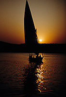 Feluccas at sunset.  They are the traditional sailboats of Egypt's Nile.