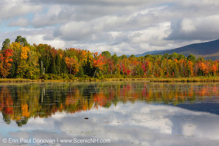 Pondicherry Wildlife Refuge - Reflection of autumn foliage in Cherry Pond in Jefferson, New Hampshire USA during the autumn months.