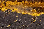 Yellow Ochre Paint Spill 03 - Yellow ochre paint spill on a wet road, Hoi An, Vietnam