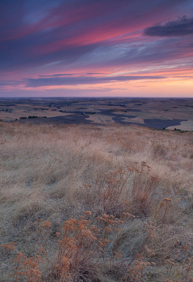 Clouds seen after sunset over the Palouse, as seen from Steptoe Butte in Eastern Washington State.