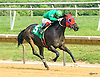 Sierra Sun winning at Delaware Park on 9/8/16