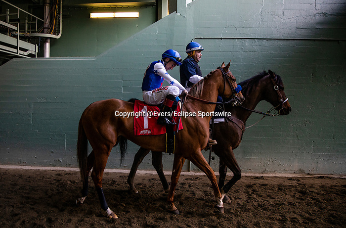 JAN 11:  Der Lu and Drayden Van Dyke at  the La Canada Stakes at Santa Anita Park in Arcadia, California on January 11, 2020. Evers/Eclipse Sportswire/CSM