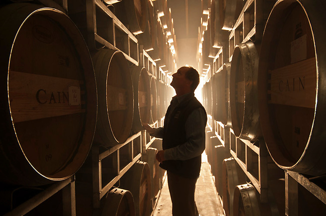 Wine maker in cellar