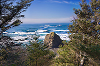 *Oregon Coast