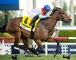 January 25, 2020: #4, Mean Mary and Luis Saez turn back the rest of the field in the Grade 3 La Prevoyante for Trainer Graham Motion at Gulfstream Park on January 25, 2020 in Hallandale Beach, FL. (Photo by Carson Dennis/Eclipse Sportswire/CSM)