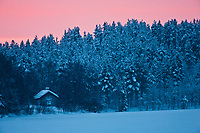 Europe/Finlande/Laponie/Levi: Aube sur le Lac Immeljärvi