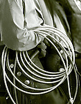 An indispensable tool of the trade for working cowboys, a lariat is at the ready to rope in a calf.