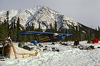 Piper Cub Parked @ Rohn Checkpoint Iditarod 1985 AK