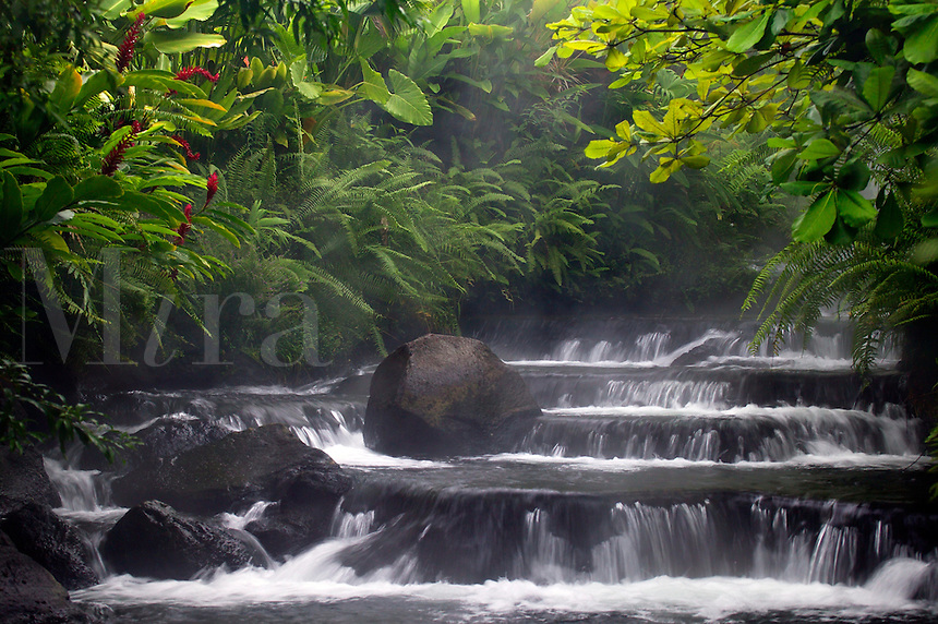 A stream flows through Tabacon Hot Spring Resort and Spa, Costa Rica