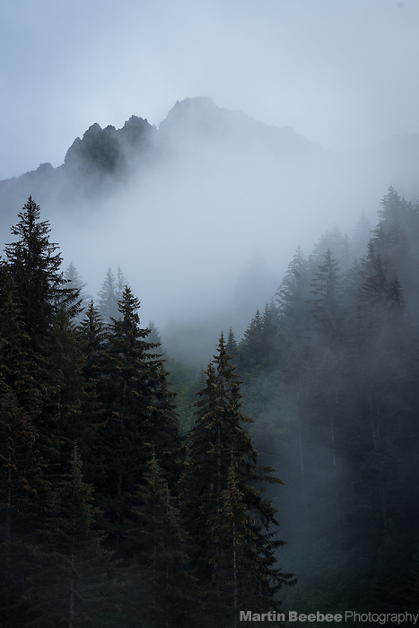 Mountain and forest in mist, Seward, Alaska