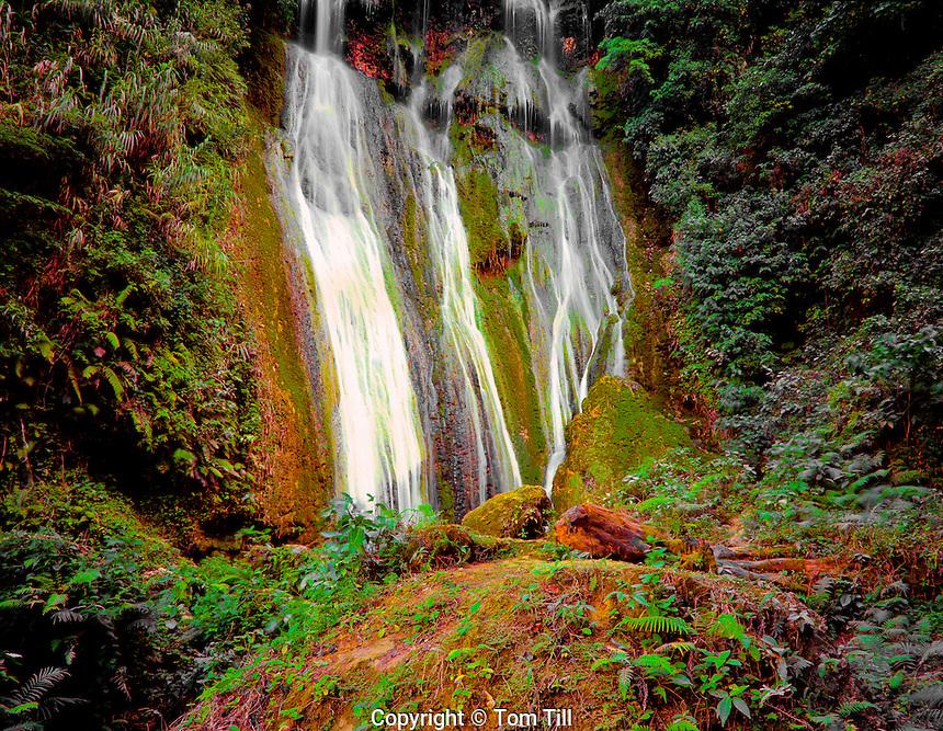 Mele-Maat Cascades  Efate Island, Vanuatu  Rainforest waterfalls and travertine dams South Pacific  Melanesia