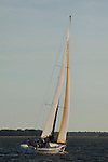 OnDeck Farr 40's racing in the charleston harbor south carolina