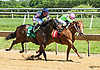 Awesome Champ winning at Delaware Park on 6/10/17