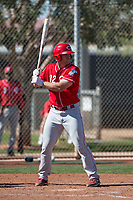Cincinnati Reds designated hitter Stuart Turner (32) during a Minor League Spring Training game against the Chicago White Sox at the Cincinnati Reds Training Complex on March 28, 2018 in Goodyear, Arizona. (Zachary Lucy/Four Seam Images)