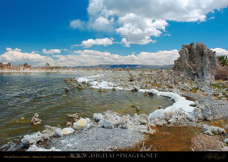 Alkaline Foam, South Tufa in Spring, Mono Lake, Lee Vining, California