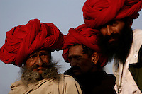 06.11.2008 Pushkar(Rajasthan)<br /> <br /> Camels owners during the camel fair.<br /> <br /> Proprietaires de chameaux pendant la foire aux chameaux.