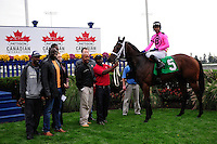 Delegation(5) with Jockey Patrick Husbands aboard.after winning the Durham Cup Stakes (Grade III) at Pattison Canadian International  in Toronto, Canada on October 14, 2012.