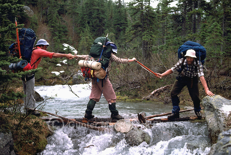 Hikers / Backpackers helping Each Other across on Logs over Mountain Creek in Manatee Mountains, near Pemberton, BC, British Columbia, Canada, Summer