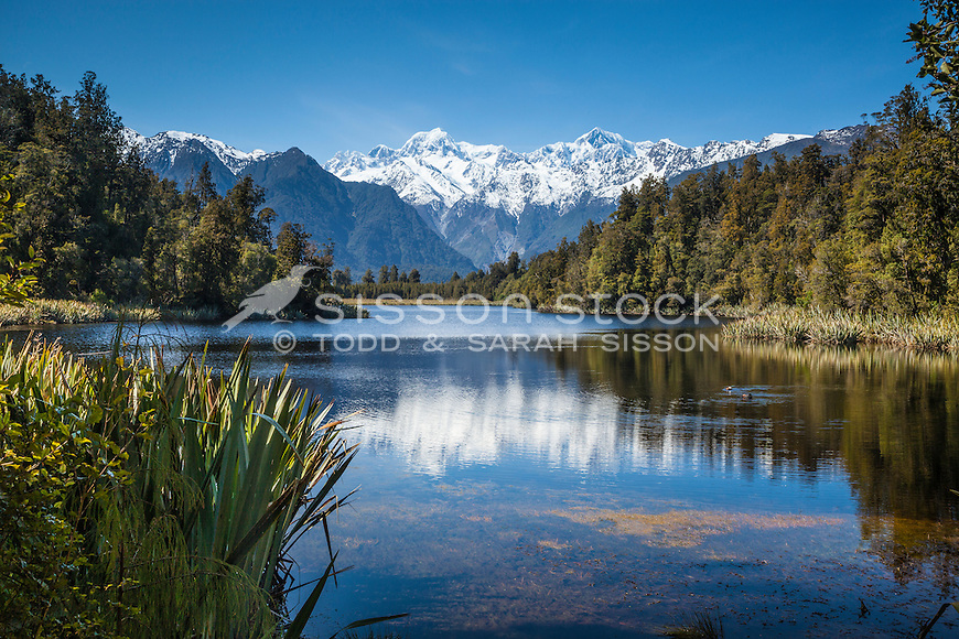 Reflections of the Southern Alps through native bush at Lake Matheson, Westland Tai Poutini National Park NZ.
